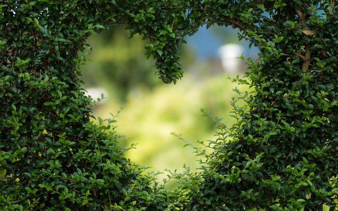 Een muurtje om je hart